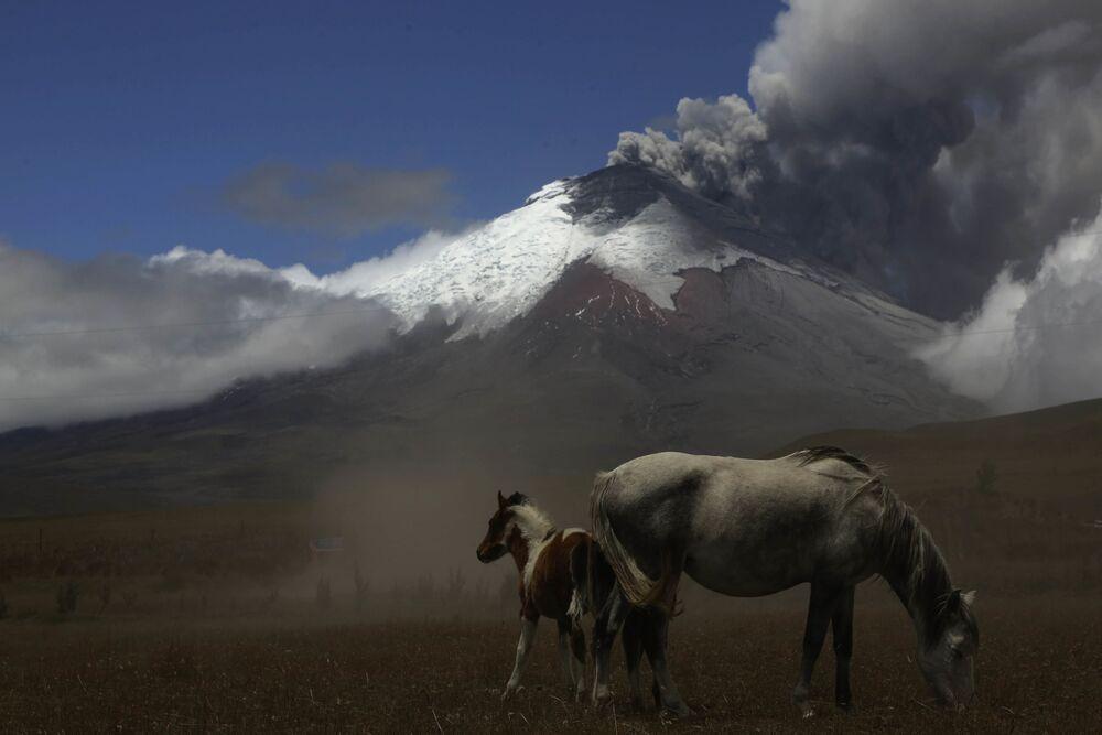 Cotopaxi, And Dağları'nda bulunan bir volkandır. Ekvador'daki en yüksek ikinci tepe olarak kabul edilen (5897 m)  Cotopaxi, aktif volkanların en tehlikelilarından biri olarak biliniyor. 1738'den bu yana 50'den fazla püskürme meydana geldi. Püskürmeleri komşu şehir Lacatunga'nın yıkılmasına yol açtı.