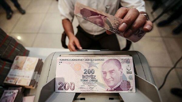 Türk Lirası, banka, ödeme - Sputnik Türkiye