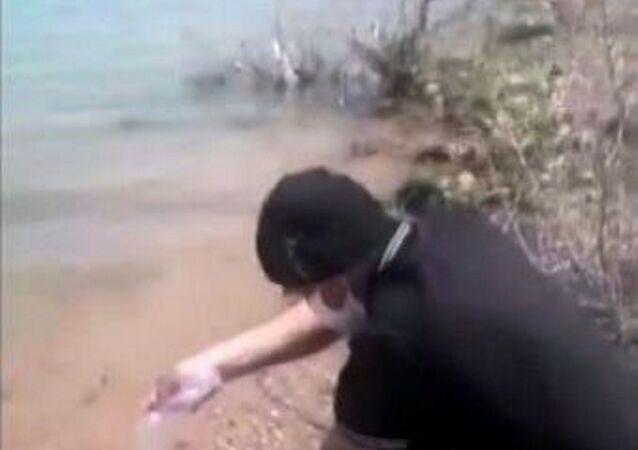 Konya'da Altınapa Baraj Göleti'ne izinsiz olarak değişik renklerde balık bırakırken yakalanan şüphelinin daha önce İstanbul ve Konya'da defalarca değişik suçlardan gözaltına alınan ve yurtdışı yasağı ile serbest kalan Chester Juall olduğu ortaya çıktı