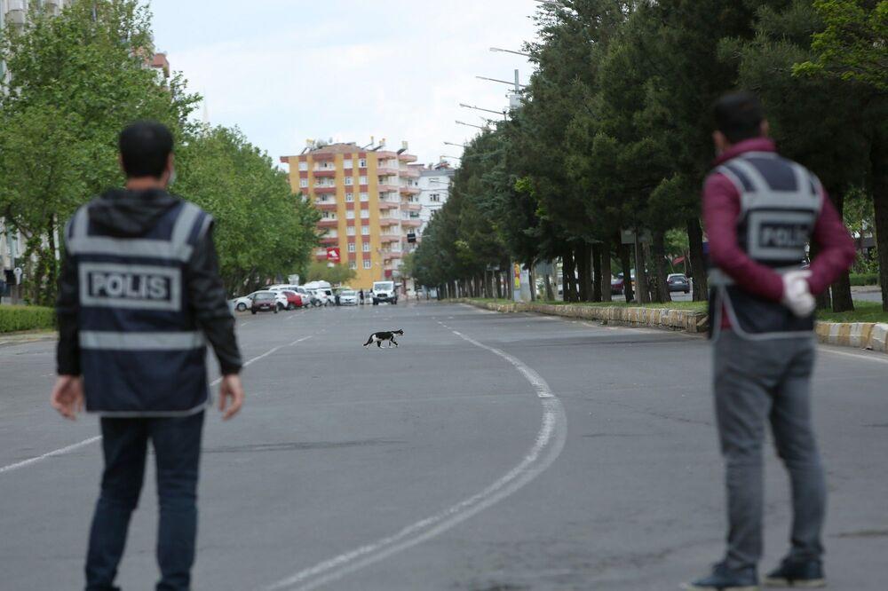 Polis kentin işlek caddelerinde kontrol noktası kurdu. Boş caddeler sokak hayvanlarına kaldı.