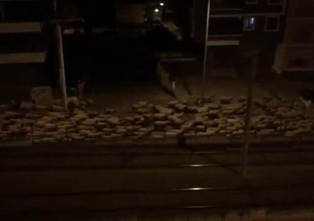 Samsun'da bir çobanın koyun sürüsünü sokağa çıkma yasağı nedeniyle boş olan yollardan götürmesi renkli görüntüler oluşturdu.