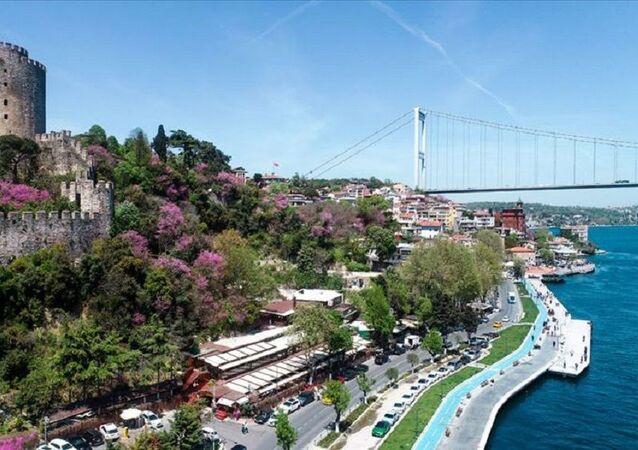 Erguvan /İstanbul manzara