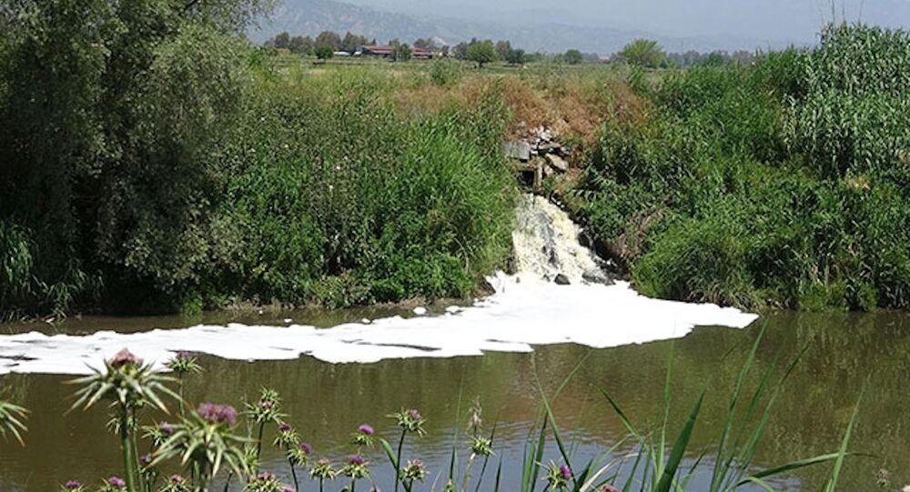 Büyük Menderes Nehri'nde kirlilik