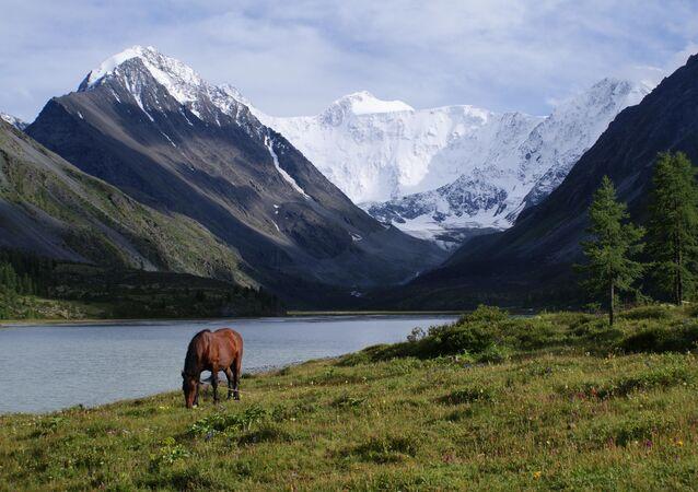 Altay Bölgesinin en yüksek dağı olan Beluha Dağı bölge sakinleri tarafından kutsal sayılır ve ihtişamlı manzarasıyla görenleri şaşırtıyor