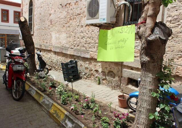 Çanakkale-Çiçek hırsızı