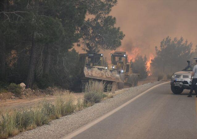 Kuzey Kıbrıs Tarım ve Doğal Kaynaklar Bakanlığı, Girne bölgesinde yer alan ve dün yangın çıkan Tepebaşı'ndaki ormanlık alanla ilgili fotoğraflar paylaştı. Alanda soğutma çalışmaları sürüyor.
