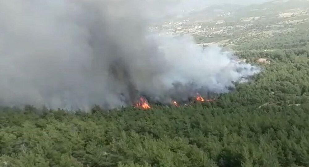 Muğla'da çıkan orman yangını kontrol altına alındı