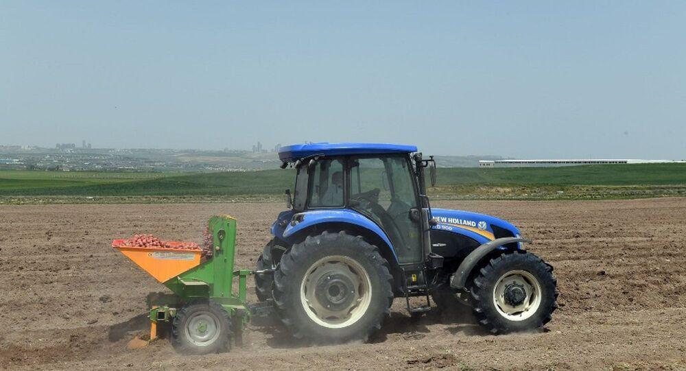 Ankara Büyükşehir Belediyesi'ne ait tarım arazilerinde üretim başladı. Mansur Yavaş'ın talimatıyla ürünler toplandıktan sonra ihtiyaç sahiplerine ulaştırılacak.