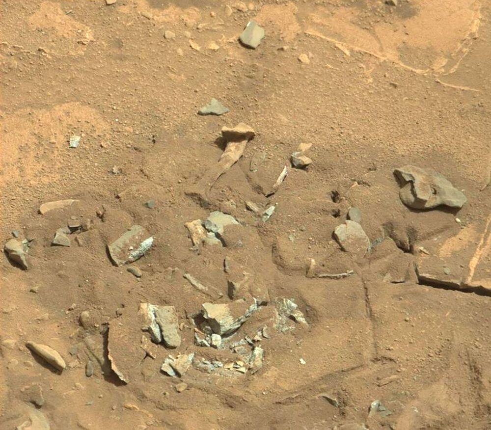 2014 yılında Curiosity, uyluk kemiğini andıran bu olağan üstü resimleri göndermişti. NASA bunların bir canlıya ait olabileceği iddialarını reddetmiş, kayaların rüzgar ya da su erozyonu yoluyla oluşmuş olabileceklerini belirtmişti.