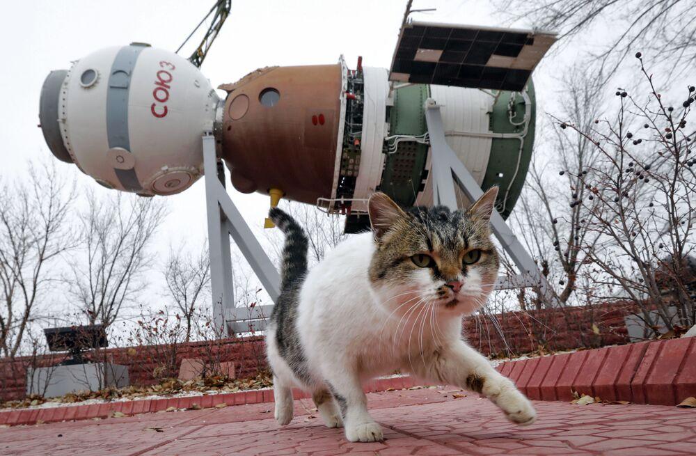 SSCB'nin dağılmasından sonra Kazakistan'a devredilen Baykonur Uzay Üssü, günümüzde 2050 yılına kadar Rusya tarafından kiralanmaktadır