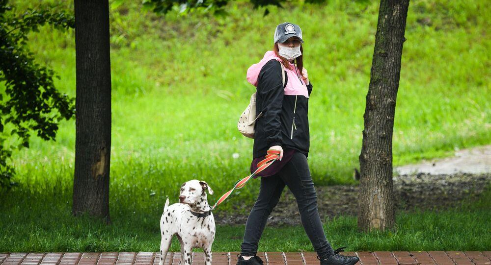 Rusa - Moskova - koronavirüs - maske - köpek