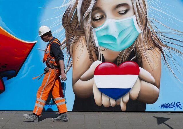 Hollanda koronavirüs