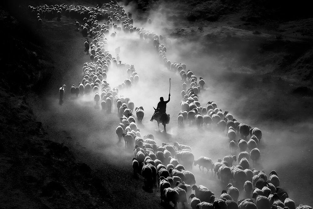 IPA 2020  Uluslararası Fotoğraf Yarışması'nın Hareket/İnsanlar kategorisinde üçüncü seçilen  Türk fotoğrafçı F. Dilek Uyar'ın Bitlis'te çekilen fotoğrafı