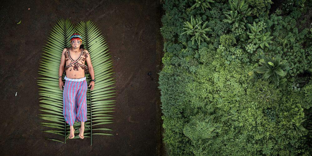 2020 Sony Dünya Fotoğrafçılık Yarışması'nı kazanan Uruguaylı fotoğrafçı Pablo Albarenga'nın Seeds of Resistance isimli fotoğraf serisi, Brezilya'da yerli halkların Amazon Nehri bölgesindeki  yaşam alanlarının yok edilmesini konu alıyor
