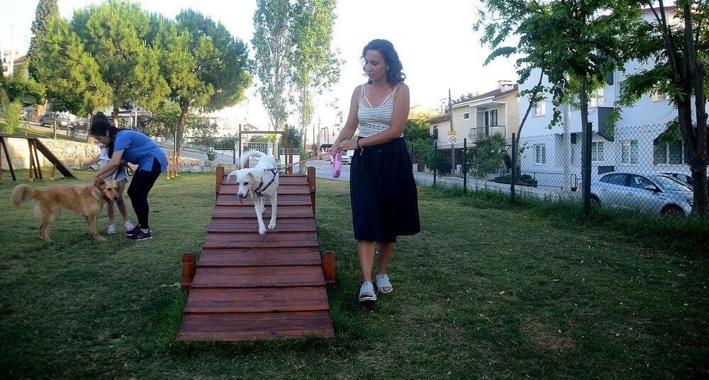 Faytonların kaldırılması ve Can Dostlar Defin Alanı gibi önemli projeleri 'Bütün Canlıların Yaşama Hakkına Saygı' mottosuyla hayata geçiren Kuşadası Belediyesi, şimdi de Türkmen Mahallesi Yaprak Sokak'ta yapımı tamamlanan ve ilçenin ilk köpek parkı olma özelliğini taşıyan can dostlar için düzenlenen oyun parkını hizmete açtı.