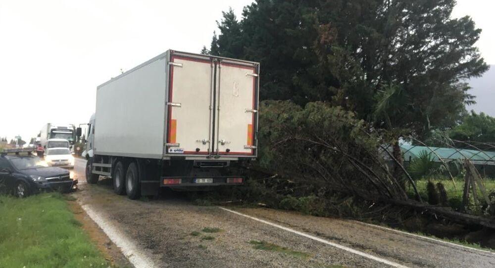 Bursa'nın Orhangazi ilçesinde fırtına yüzünden devrilen ağaçtan kaçmak isteyen kamyon, otomobile çarptı. Kazada 2 kişi yaralandı.