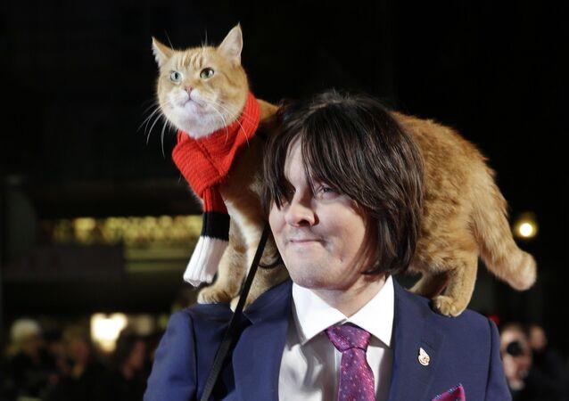 James Bowen'in hayatını değiştiren kedi Bob