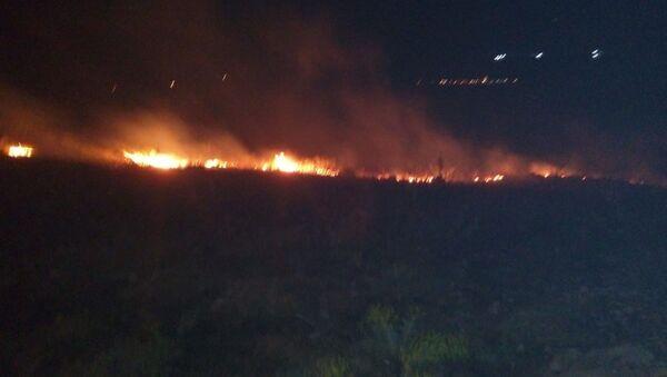 Adıyaman, orman yangını - Sputnik Türkiye