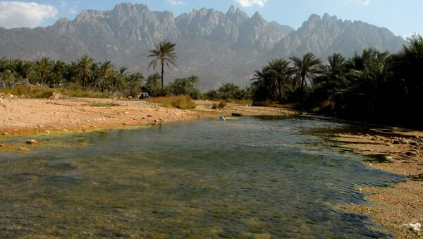 Yemen - Sokotra adası - 2008 - Sputnik Türkiye
