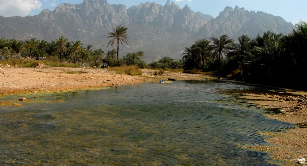Yemen - Sokotra adası - 2008