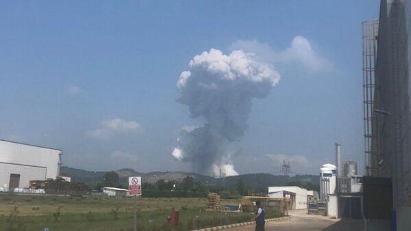 Sakarya'da havai fişek fabrikasında patlama - Sputnik Türkiye